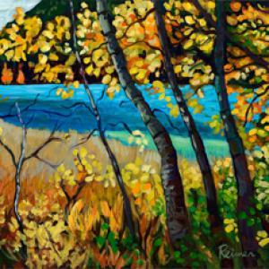 Marshy Lake in the Fall